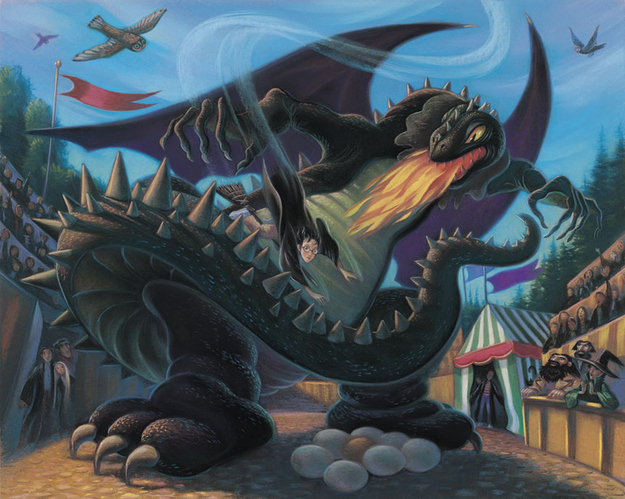 """Harry enfrentando o dragão em """"O Cálice de Fogo"""""""